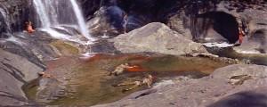 Bridge 6 Waterfall